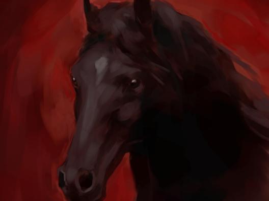 mar-del-valle-caballo-negro-black-horse-dest